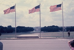 The flags flying in front of the Washington Monument